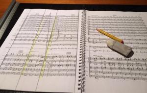 Maestro, che bella la vita da direttore d'orchestra